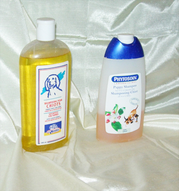dogs-grooming-yorkshire-terrier-best-shampoo-yorkie-coat-and-hair-care